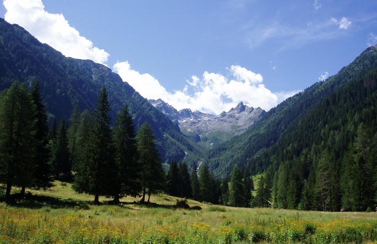 Malghe, laghetti e relax in campeggio in Trentino